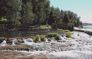 Montana State Campground - Giant Springs State Park - State Campgrounds in Montana